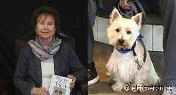 Sobreviviente del Holocausto busca a su perro en Paracas - El Comercio - Perú