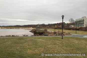 Wolfville looking for flood mitigation strategy to combat rising sea levels - TheChronicleHerald.ca