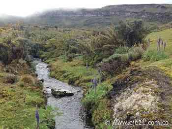 Fuentes hídricas del páramo de Pisba podrían estar en riesgo - Eje21