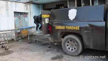 Dos caficultores fueron secuestrados y asesinados en zona alta de Araure - El Pitazo