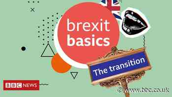 Brexit Basics: The transition period explained