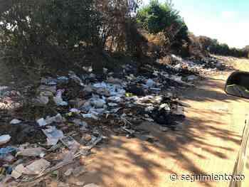 Pivijay ad portas de calamidad pública por basuras arrojadas en vías públicas - Seguimiento.co