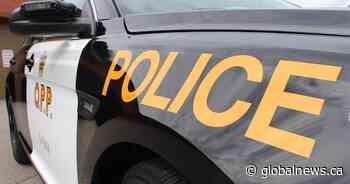 Trent Hills woman, Belleville man arrested after fleeing collision in Quinte West: OPP - Global News