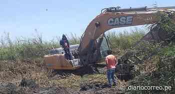 Descolmatan varios tramos de río en Punta de Bombón - Diario Correo