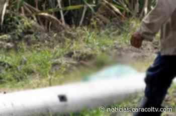 Hallan muerta a joven en cañaduzal en vía Cali-Jamundí, Valle del Cauca - Noticias Caracol