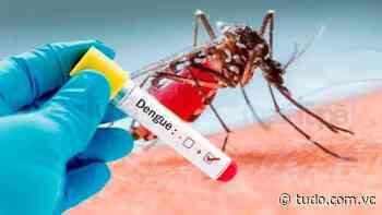 Jundiai registra seis casos importados positivos de dengue. - Portal Tudo