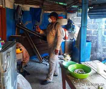 Inician acciones de mitigación de dengue en Montelíbano y Tierralta - LA RAZÓN.CO