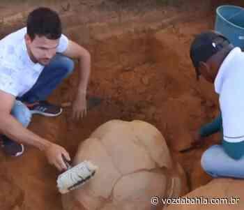 Senhor do Bonfim: Agricultor encontra urna funerária da tribo Tupi-Guarani enterrada em sítio - Voz da Bahia