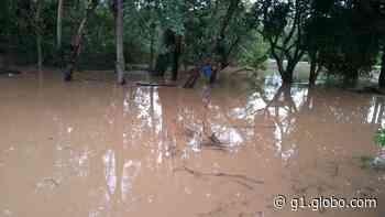 Rio Camanducaia transborda e água atinge casas em dois bairros de Jaguariúna, SP - G1