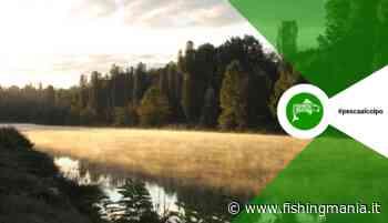 MONDIALE DI PESCA 2020 - Confermato Peschiera del Garda - Fishingmania