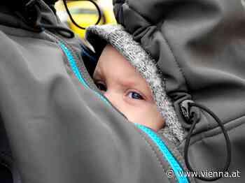 """Baby-Tragehilfen im """"Konsument""""-Test: Vier Modelle fielen durch - VIENNA.AT"""