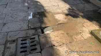 Bari, degrado al cimitero di Carbonara. La denuncia di Fabio Romito della Lega - Puglia In