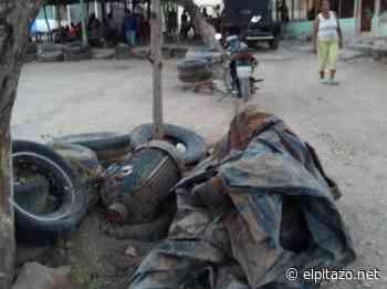Sembradíos en El Tocuyo fueron abandonados por falta de agua - El Pitazo