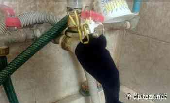 """Habitantes de El Tocuyo usan medias en tuberías para """"filtrar"""" sucio - El Pitazo"""