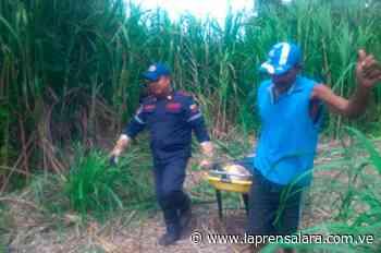 Encuentran cadáver flotando en río de El Tocuyo - La Prensa de Lara