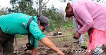 Primer huerto agroecológico se inauguró en Atuntaqui - Diario El Norte