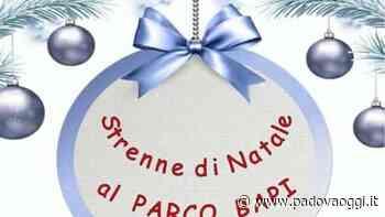 Strenne di Natale al Parco Bapi di Mestrino - PadovaOggi