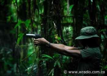 Ejército Nacional neutraliza atentado terrorista en Fortul, Arauca - W Radio
