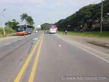 Mujer de Ansermanuevo muere arrollada en la vía Cali - Cartago - Noticias NVC