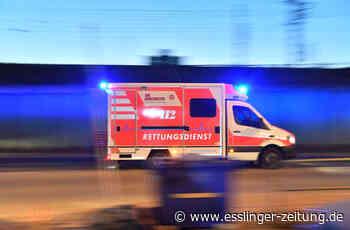 Junger Mann fährt in Plochingen auf parkendes Auto - Polizei - Eßlinger Zeitung - esslinger-zeitung.de