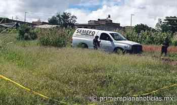 Crimen organizado tortura y mata a un hombre en Buenavista - Primera Plana Noticias