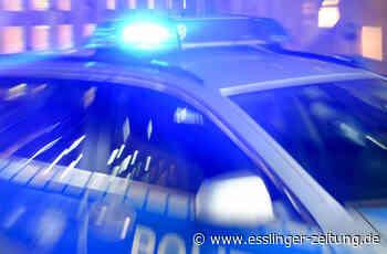 Autofahrer bei Unfall in Plochingen leicht verletzt - Polizei - esslinger-zeitung.de