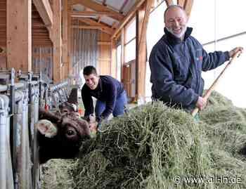 Landwirtschaft: Heu und Gras: Tiere auf Waltenhofener Bauernhof werden traditionell gefüttert - all-in.de - Das Allgäu Online!