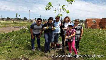 Argentina: la diócesis de Gregorio de Laferrere va por el cuidado de la Casa común - Revista Vida Nueva
