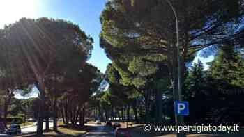 """Corciano, interventi in arrivo per via Parco a San Mariano. Pierotti: """"Segnalateci eventuali criticità così potremo intervenire"""" - PerugiaToday"""