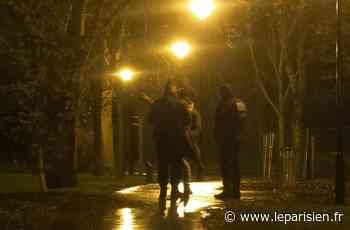 Roissy-en-Brie : une semaine après l'agression, la police «photographie» le parc - Le Parisien