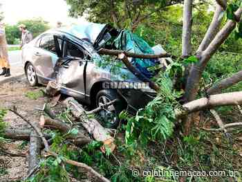 Carro bate em árvores na BR-259, em Baixo Guandu- ES, e deixa feridos - Colatina em Ação