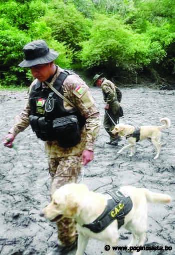 En Sorata buscan a Magdiel con perros en dos lugares clave - Pagina Siete