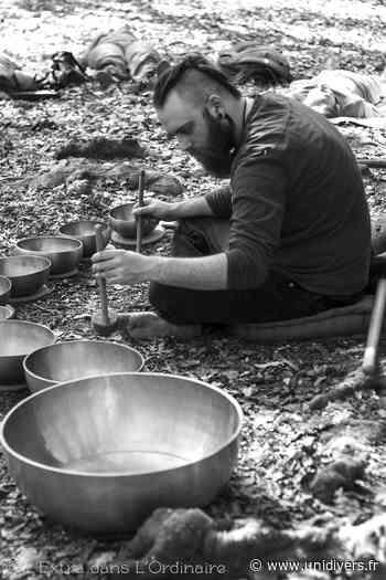 Séance de méditation sonore Maison des forêts de Saint-Etienne-du-Rouvray 16 février 2020 - Unidivers