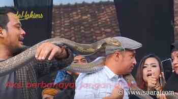Ngeri, Irfan Hakim Histeris Nyaris Diterkam Ular King Korba Panji Petualang - Suara.com