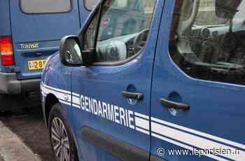 Lizy-sur-Ourcq : les gendarmes empêchent la tenue d'une free party - Le Parisien