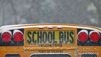 School buses cancelled for Timmins, Cochrane, Kapuskasing, Hearst and more - CBC.ca