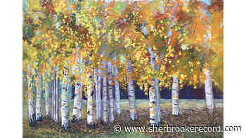 Two solo exhibitions open in Magog on Friday night - Sherbrooke Record