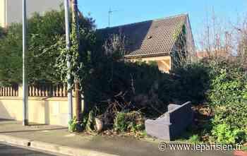 Savigny-sur-Orge : la guirlande défectueuse embrase le sapin et fait trois blessés - Le Parisien