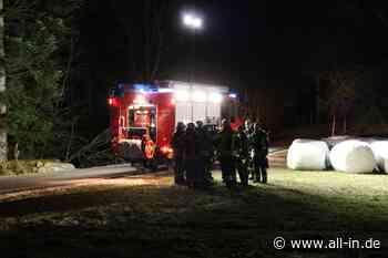 Feuerwehr-Einsatz: Mann verletzt sich in Scheidegg bei Baumfällarbeiten: Ehefrau findet ihn im Wald - Scheidegg - all-in.de - Das Allgäu Online!