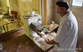 Eysines : la plus grande foire au gras de Gironde - Sud Ouest