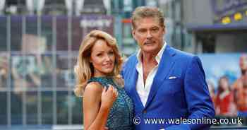 David Hasselhoff rules out having children with Welsh wife Hayley - Wales Online