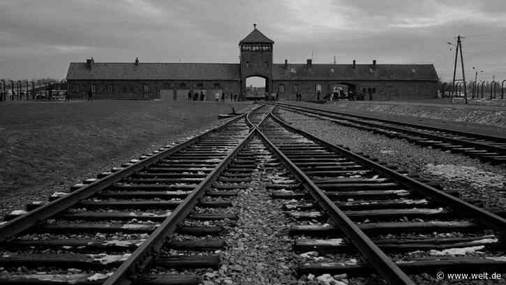 Auschwitz-Birkenau – Fotografien gegen das Vergessen - WELT
