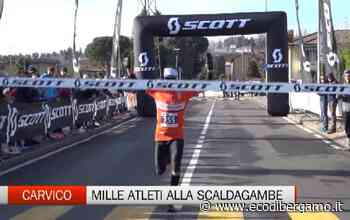 Carvico, la Scaldagambe Winter Trail 2020 - Video Carvico - L'Eco di Bergamo