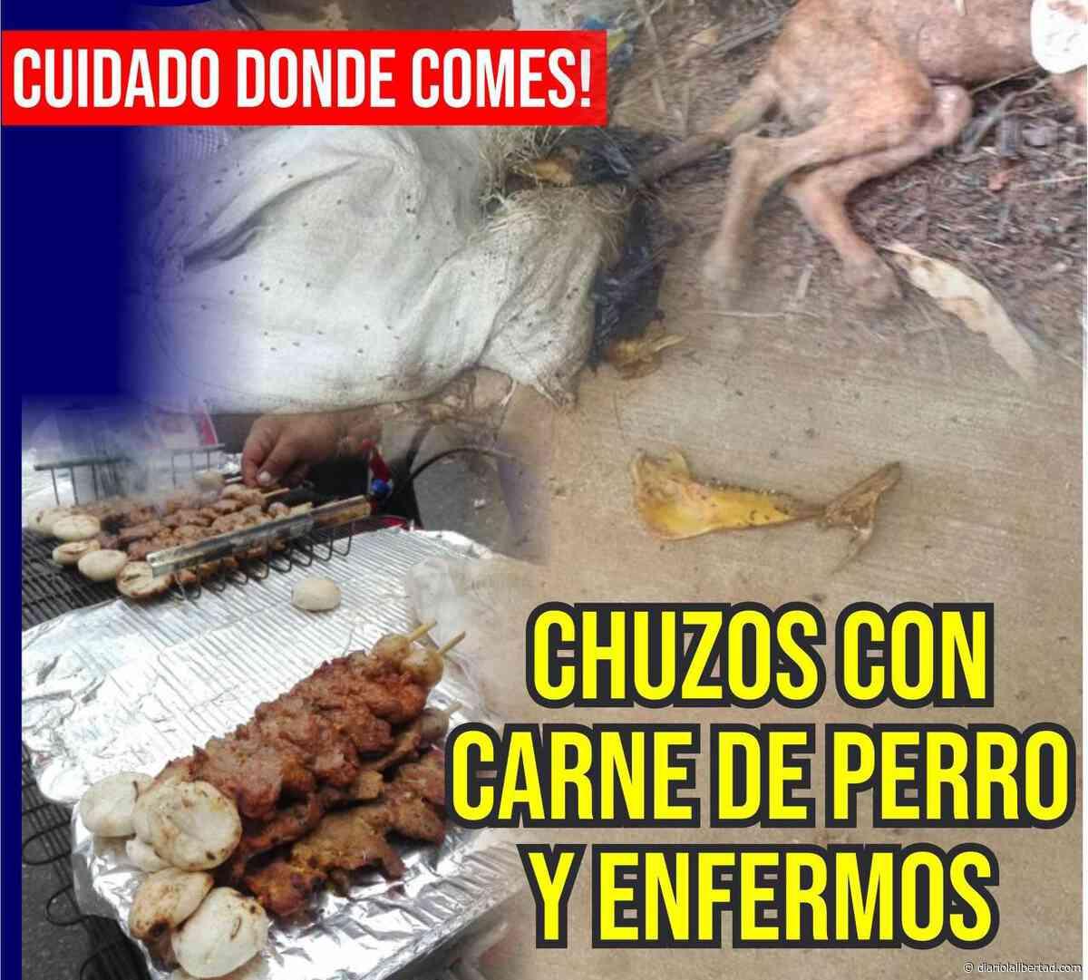 Vendían chuzos de carne de perro y al parecer enfermos en Simití, Bolívar - Diario La Libertad