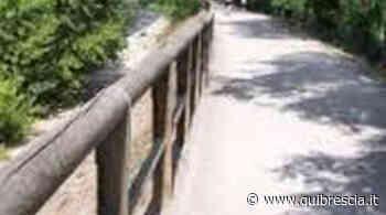 Sarezzo, morto il cane che aveva mangiato bocconi in ciclabile - QuiBrescia.it