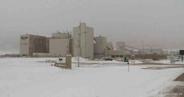 Colonsay, Sask. feeling impact of Mosaic's move to idle nearby potash mine - Global News