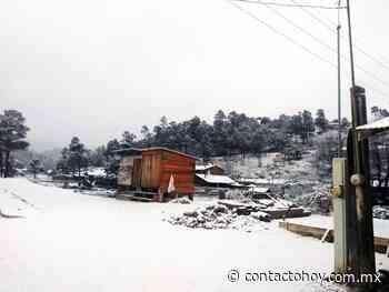Prevén hoy caída de nieve en Guanaceví, Tepehuanes, Santiago Papasquiaro y San Dimas. - Contacto Hoy