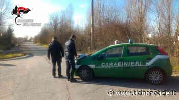 Pregnana Milanese: rinvio a giudizio per i gestori della cava Bellasio - Ticino Notizie