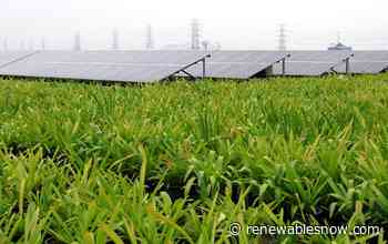 Hydro-Quebec plans 9.5 MW of solar in La Prairie, Varennes in 2020 - Renewables Now