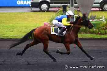 Pronostic de la course PRIX DE PONTCHATEAU - 27 - Canal Turf